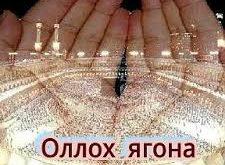 allohga-imon